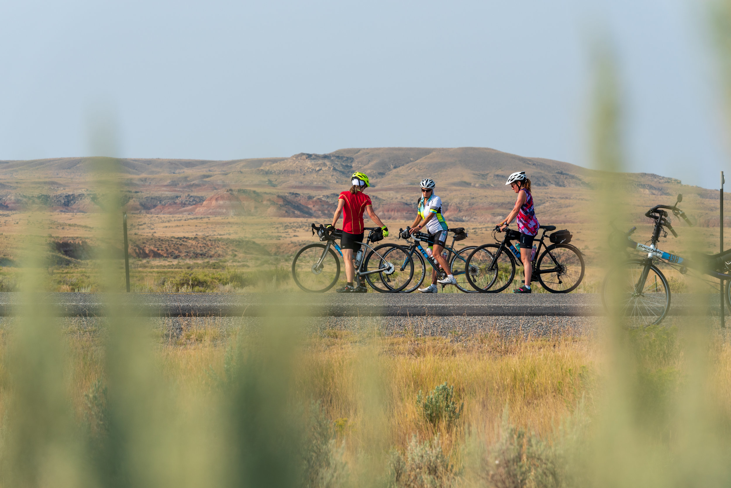 Cyclists next to the McCullough Peaks Wild Herd Management Area. hosted by  Friends Of A Legacy.  Photo by Nick Olson.