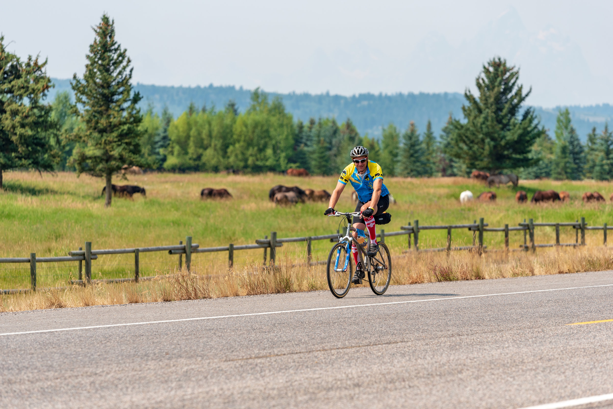 A CGY cyclist from Switzerland makes his way through Togwotee Pass - an area of the Greater Yellowstone Ecosystem outside of Teton and Yellowstone National Park where people typically see wildlife just off the highway. Nickolas Olson Photography for Cycle Greater Yellowstone