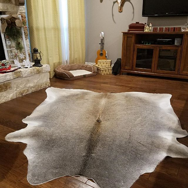 New Brazilian cowhide #cowhide #cowgirl