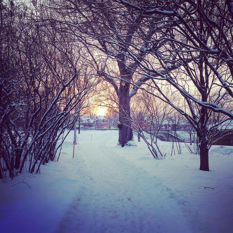 snow-trail-run