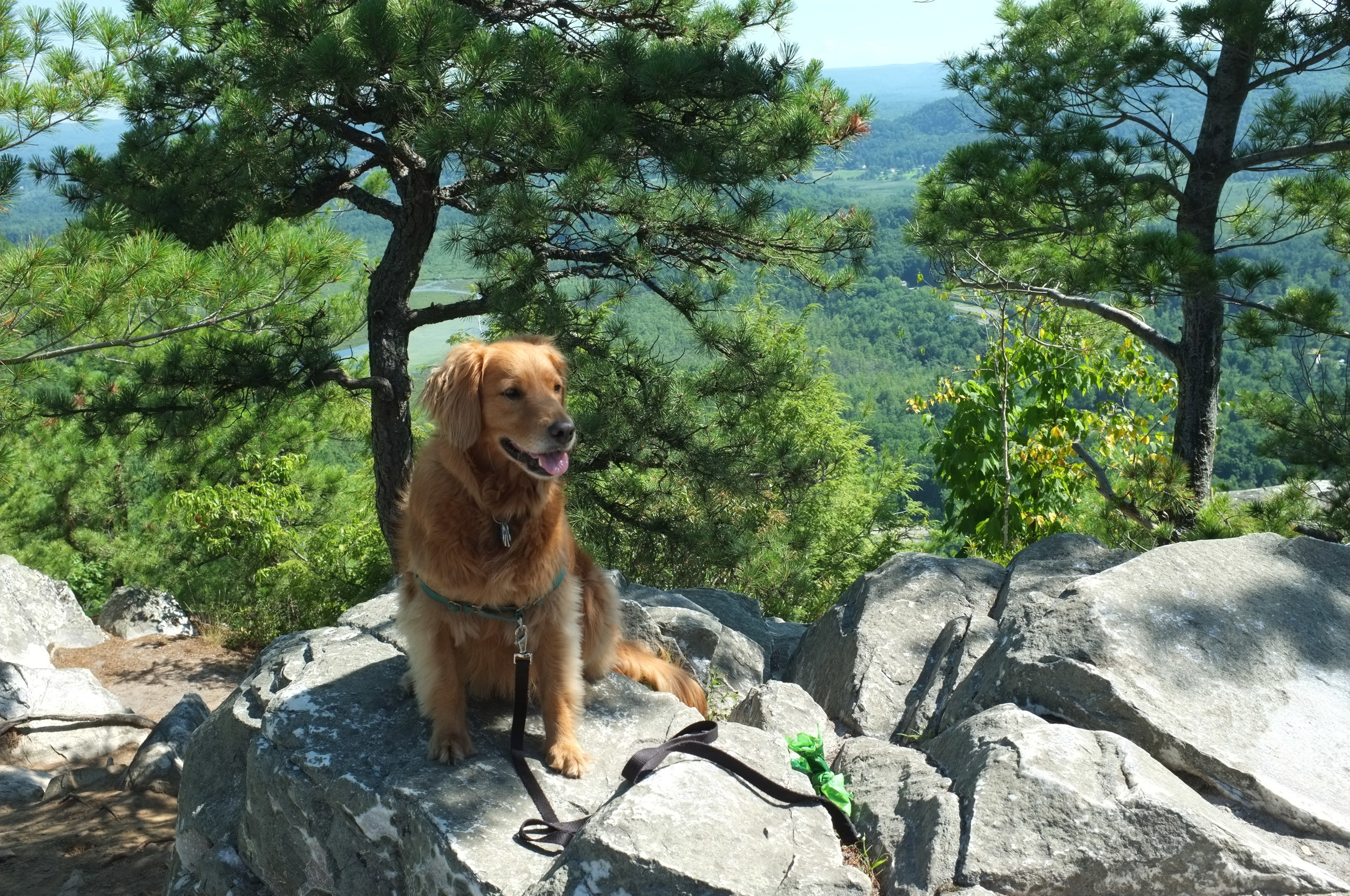 Taking a rest at the top of Monument Mountain.