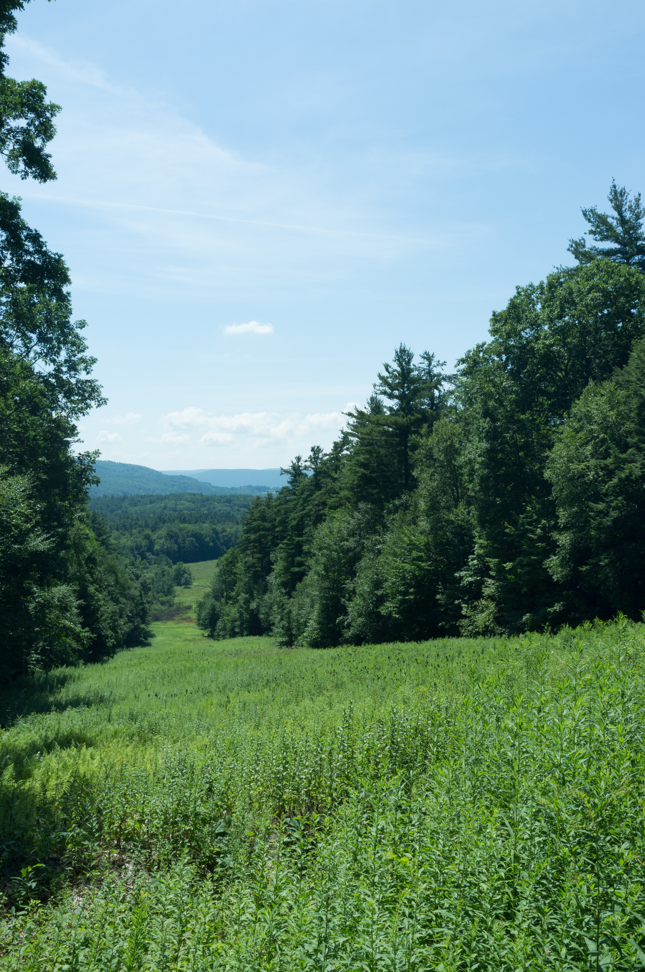 One of the many breathtaking views on the trails at Olivia's Overlook.