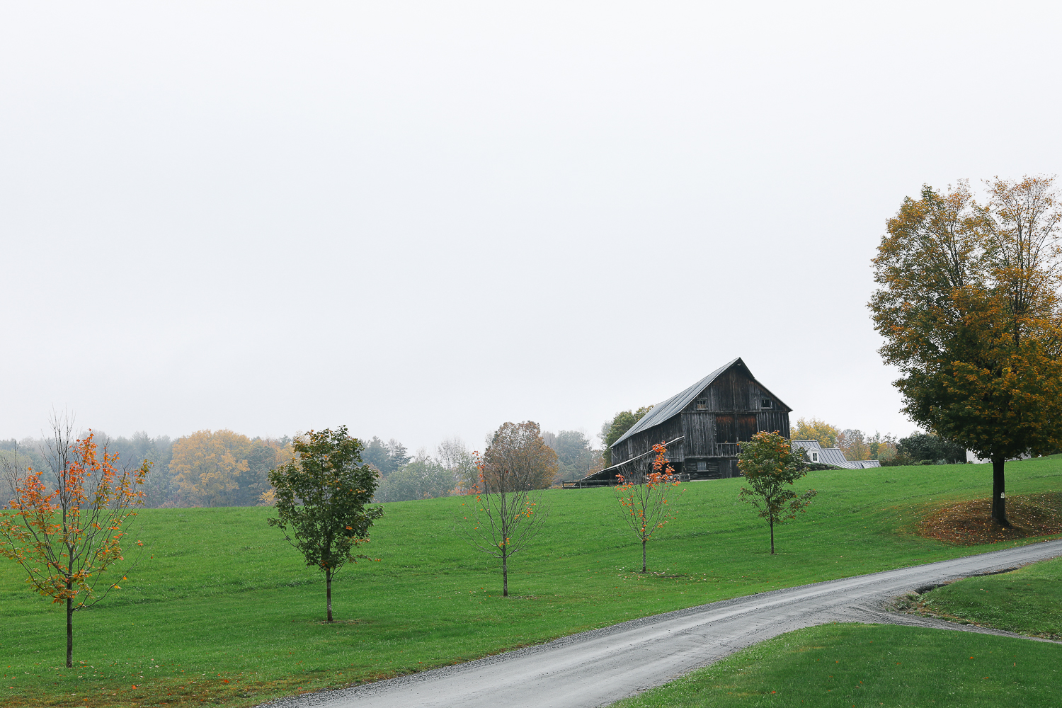 grey barn (1 of 1).jpg