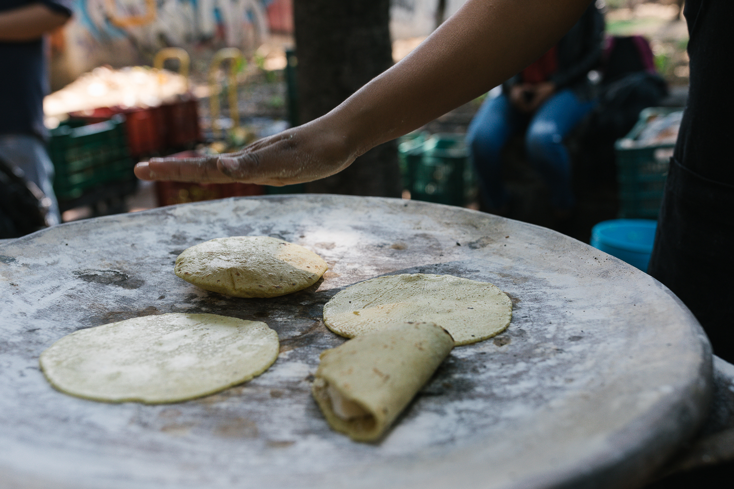 Tortillas on the comal at Mercado el 100