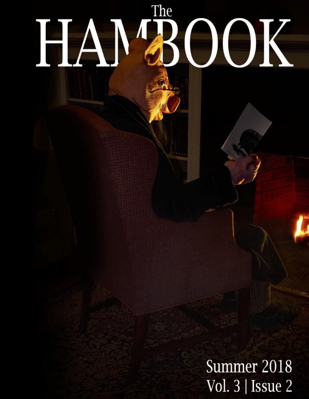 Hambook 7.jpg