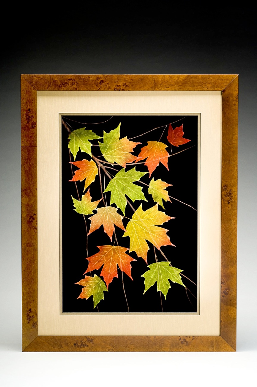 Shadowbox 18x24 Sugar Maple