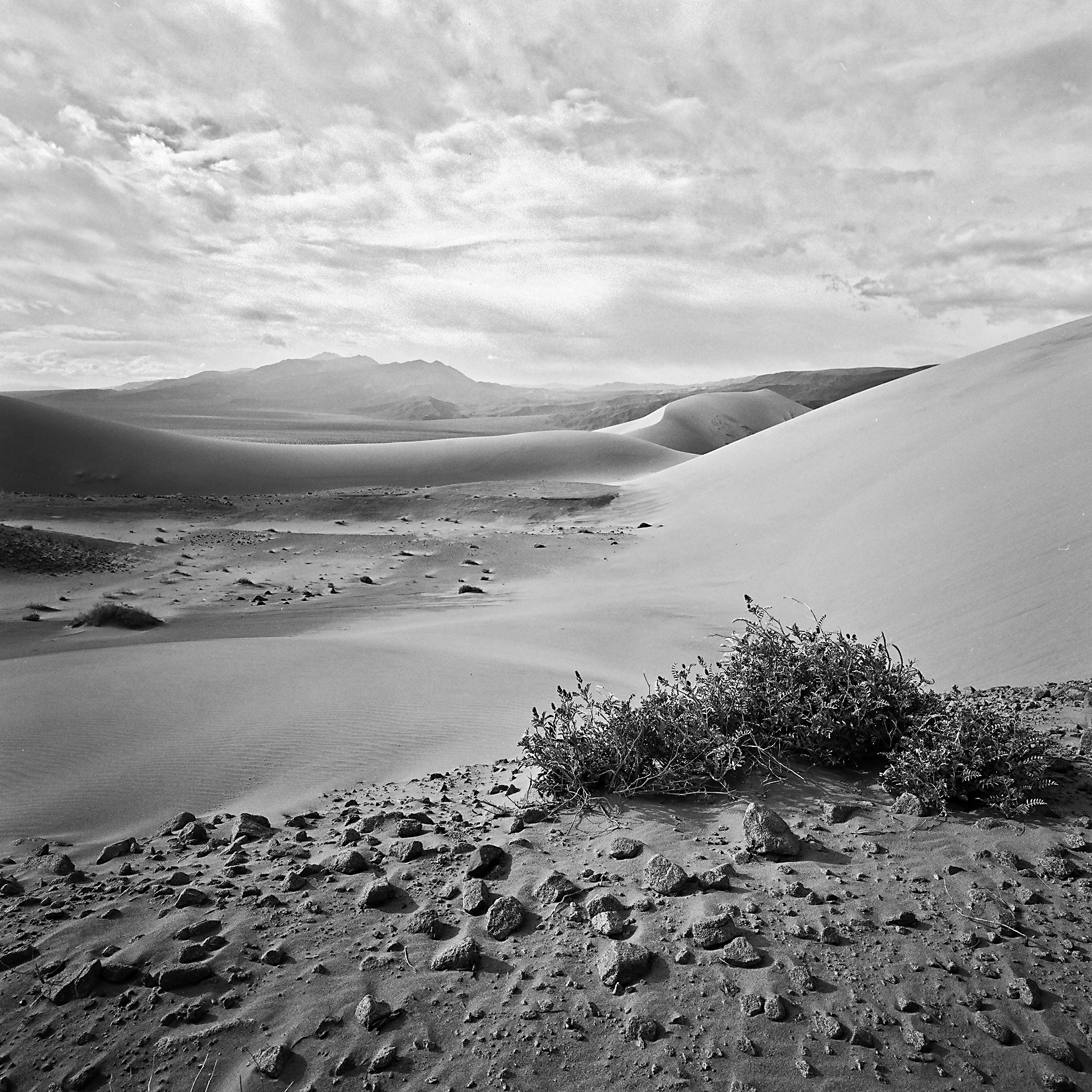 Panamint Dunes, Death Valley National Park, California © 2012.  Image: Hasselblad SWC + Zeiss Biogon 1:4.5/38mm.