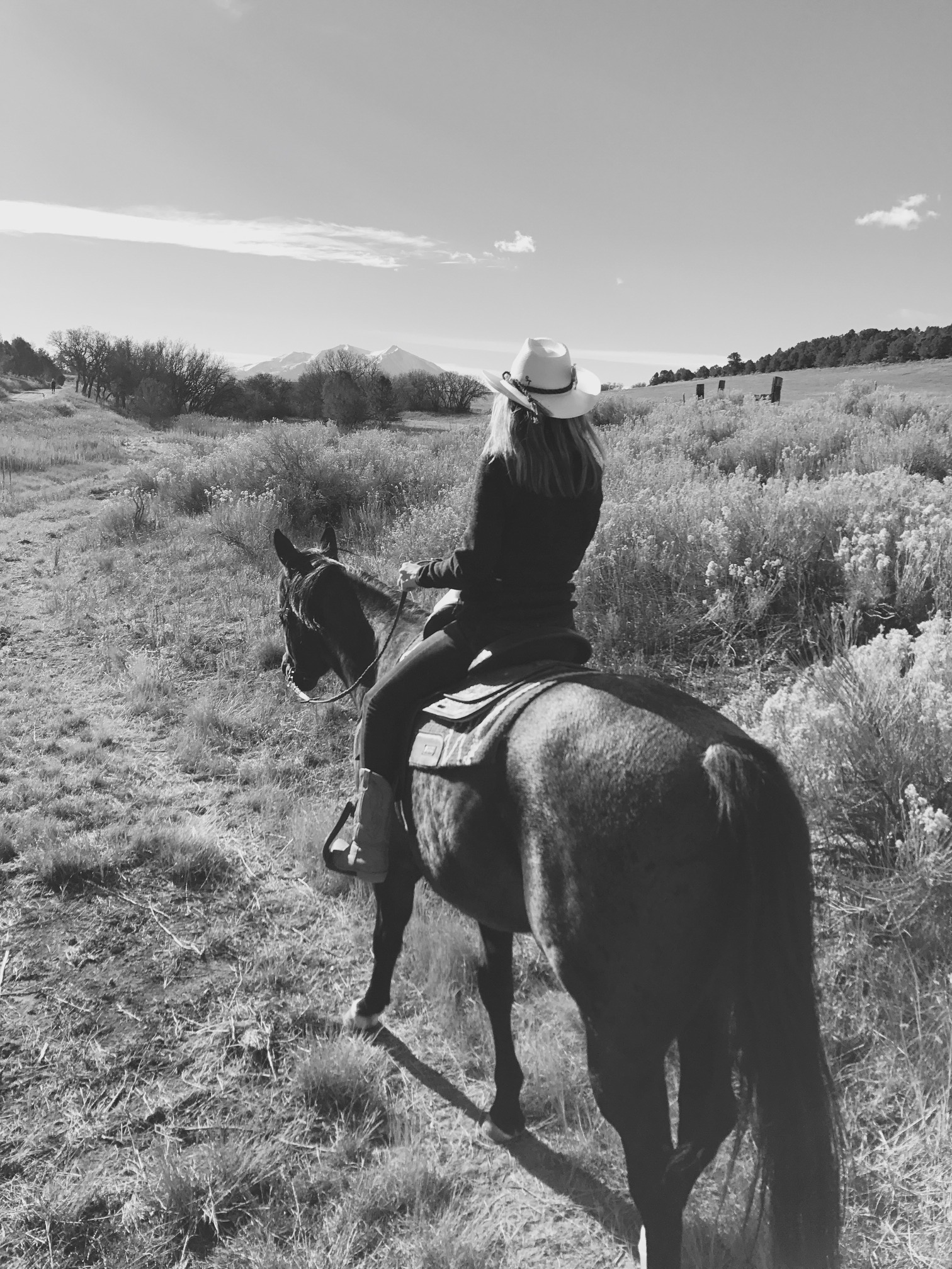 sidney black and white trail ride.jpg