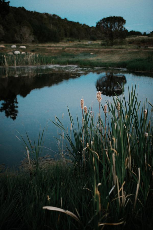Cedar Ridge Ranch-57.jpg
