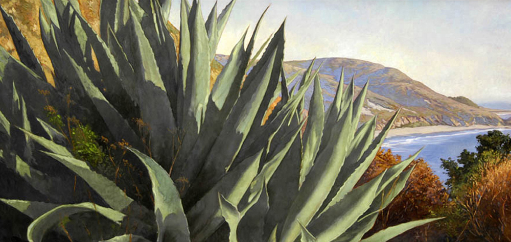 Big Sur Agaves, 18 x 36, oil on canvas, sold.