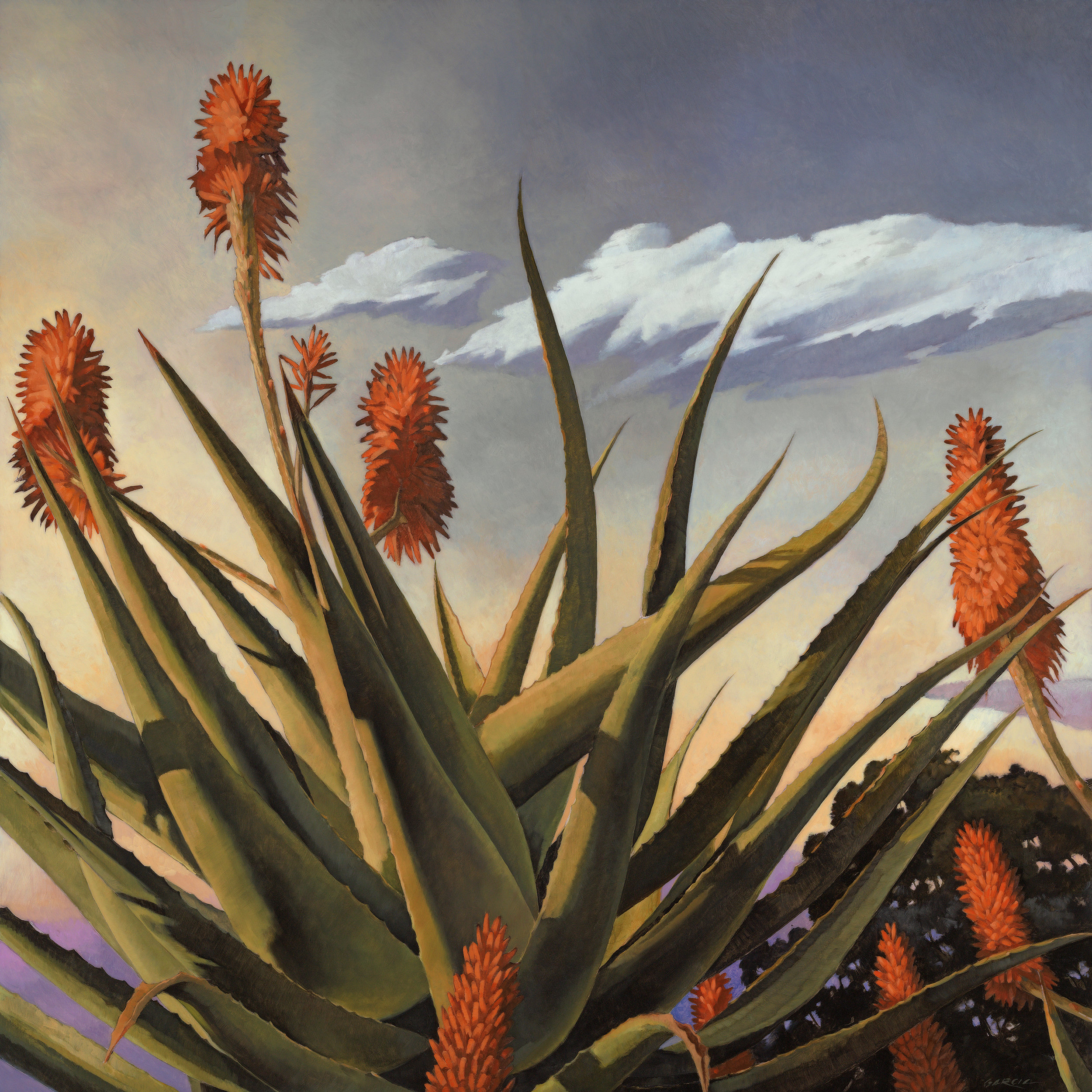 Aloe Speciosa (comission) 36x36, at artist studio SOLD