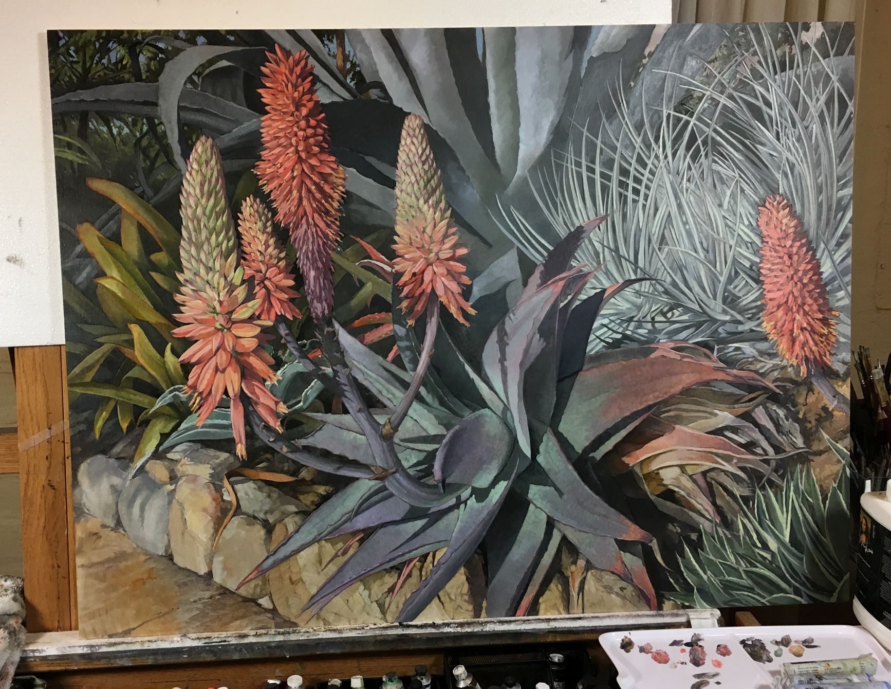 Aloes in Wonderland   30x40 oil   on linen, commission