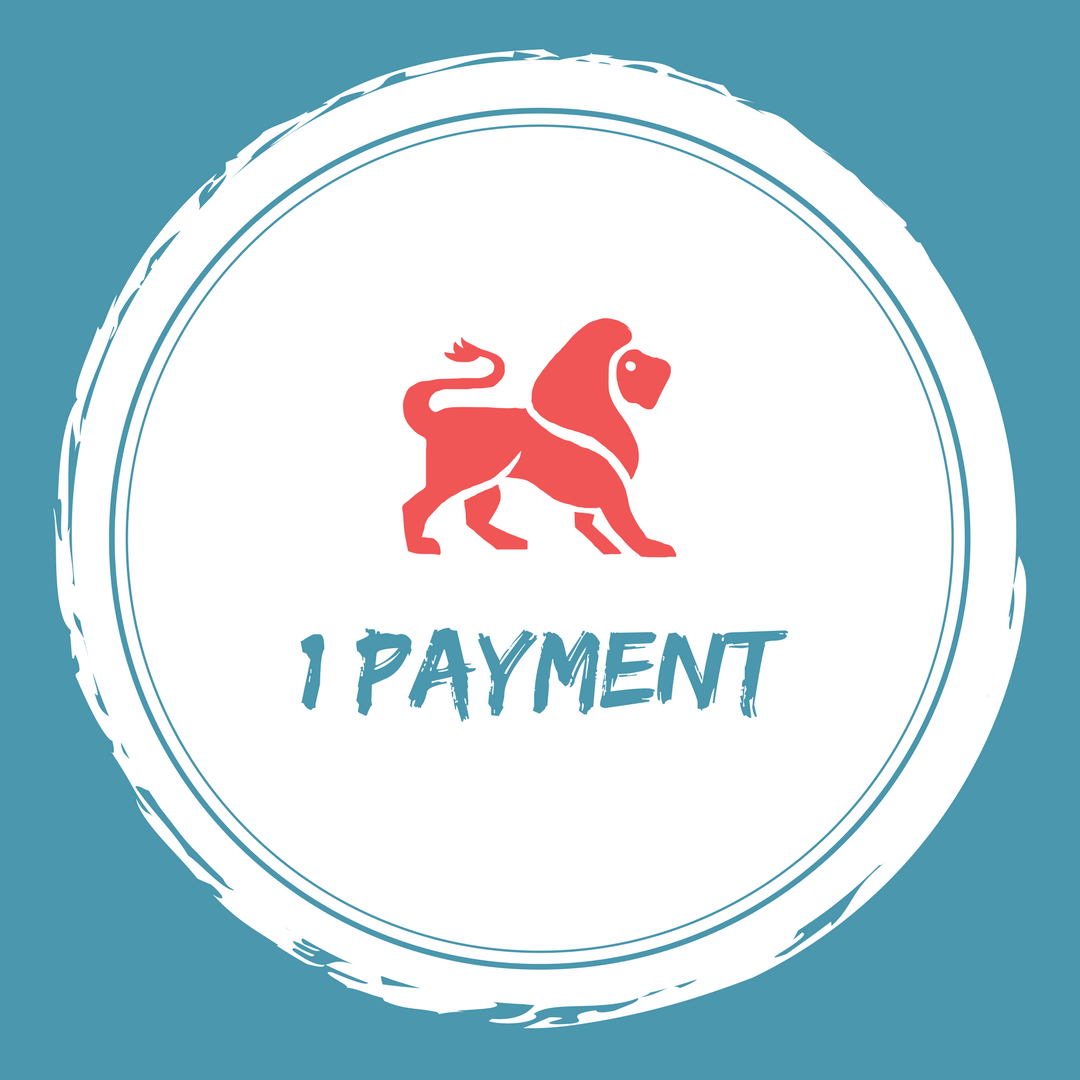 1 payment.png