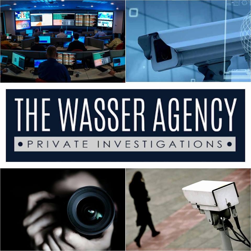Private Investigator Criminal Investigation