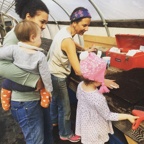 Greenhouse Volunteer Day