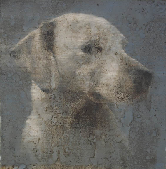 """Chien bleu, dry pastel and watercolor on paper,48.75"""" x 49.5"""""""