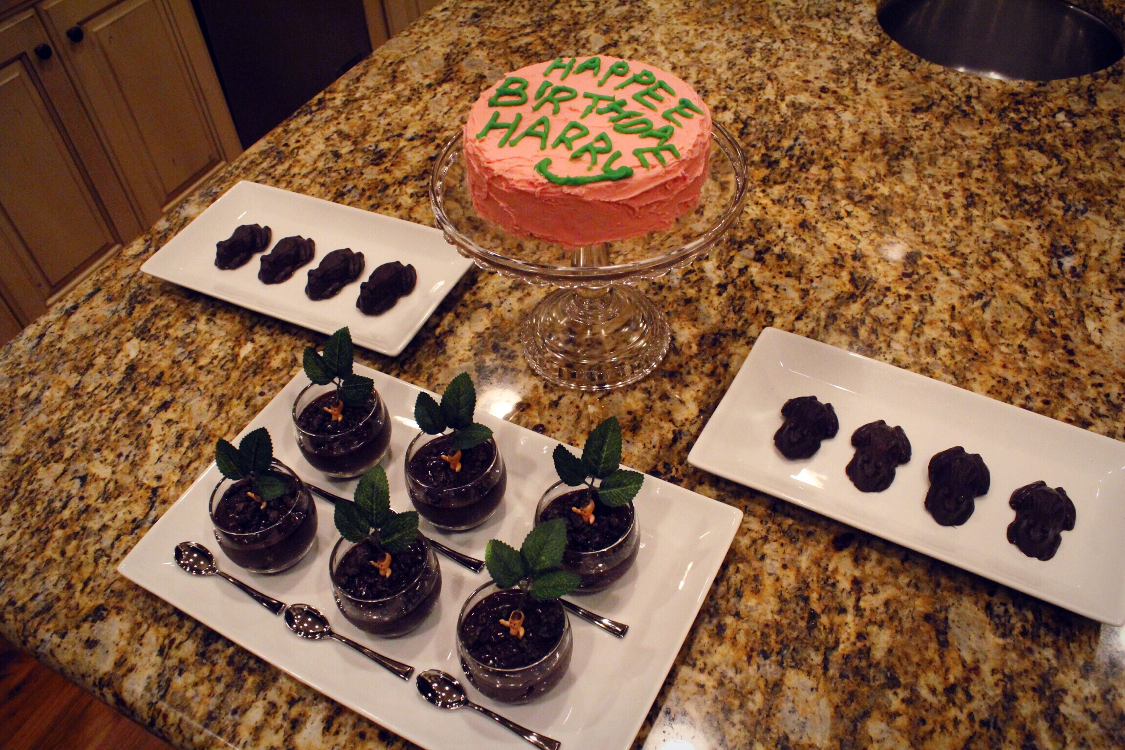 harry potter party_design organize party_treats_chocolate frogs_birthday cake_mandrake dirt cups.JPG