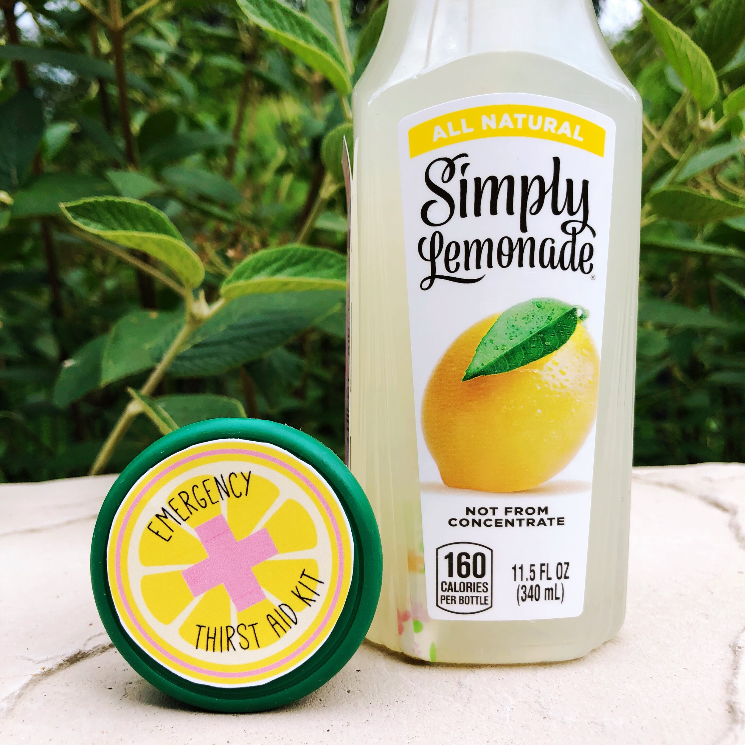 Lemonade Thirst Aid Kit_Summer Party Favor_Design Organize Party.JPG