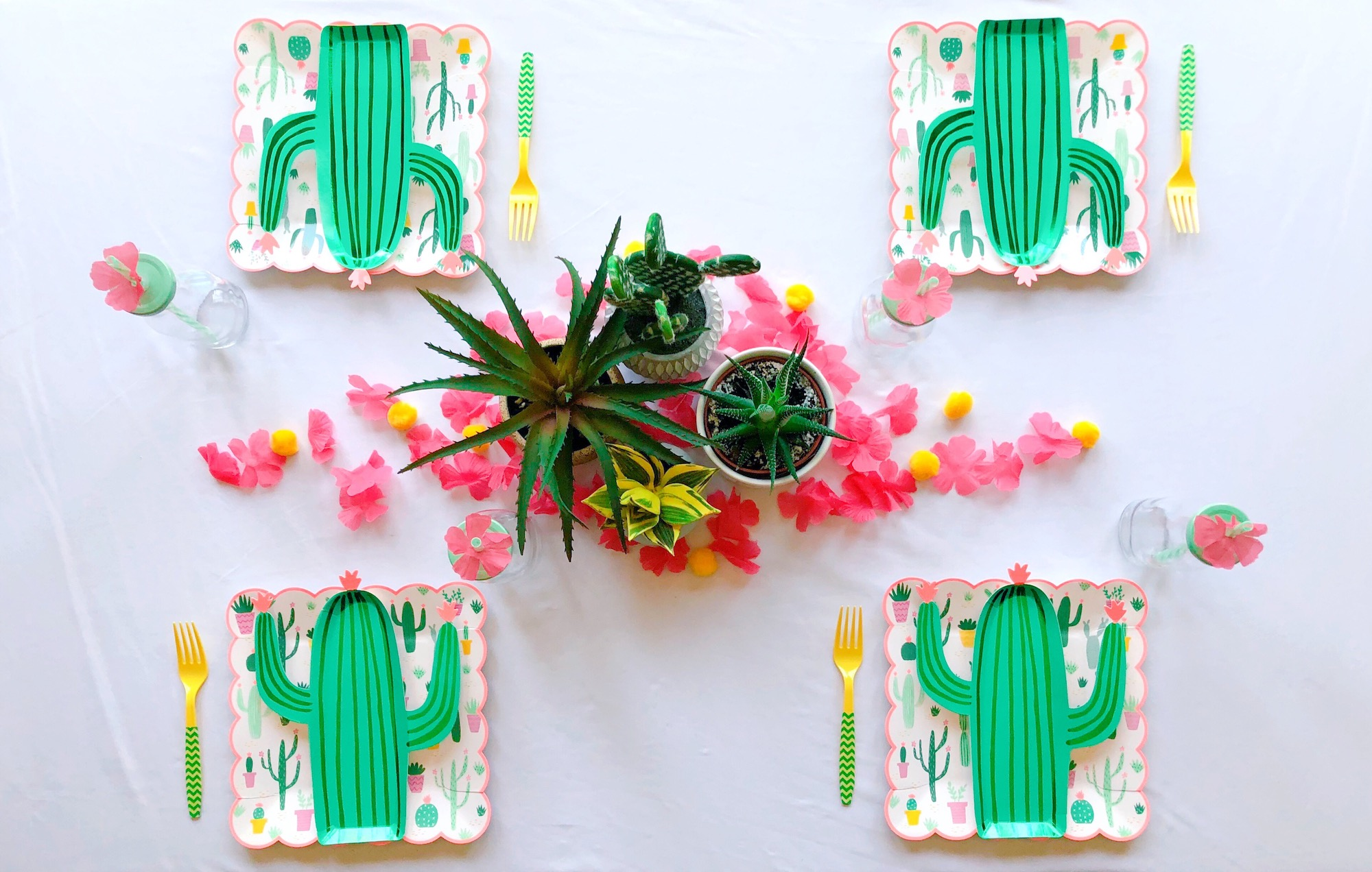 Cactus Party Table Setting Decor_Design Organize Party.JPG