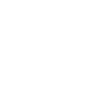 UAW Local 245