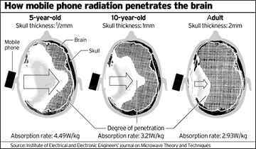 CellRadiation.png