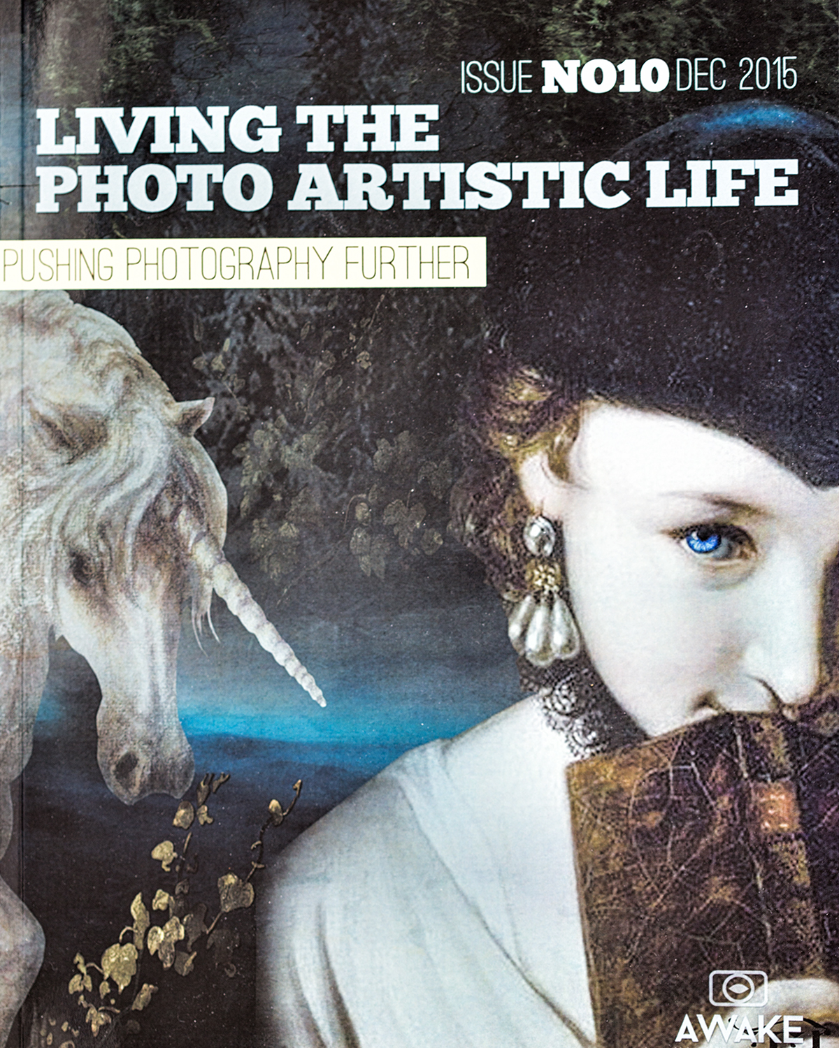 Click on the cover to take you to Living The Photo Artistic Life