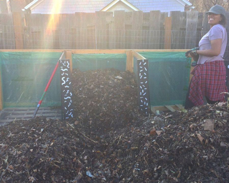 Tanvi compost.jpg