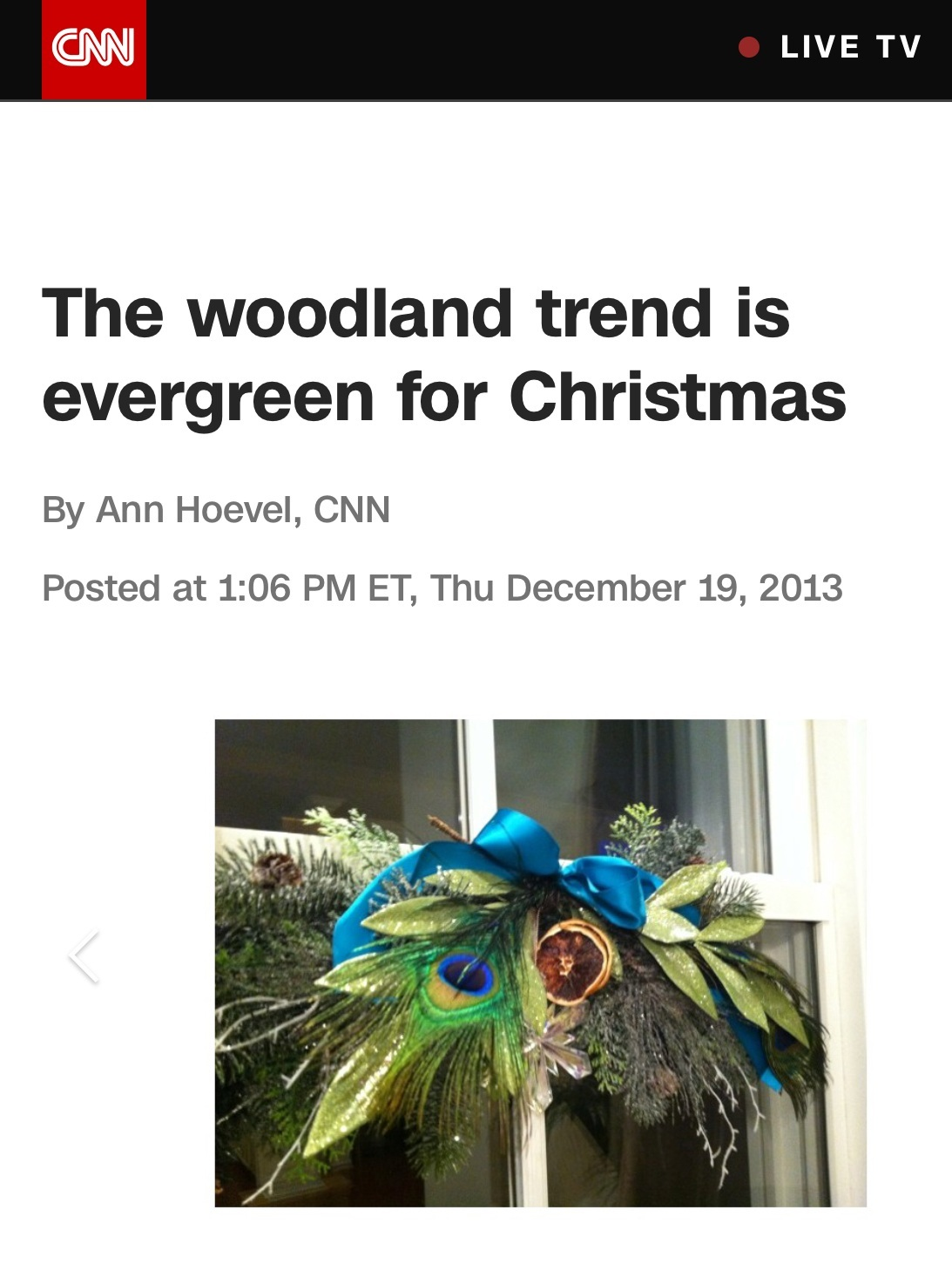CNN_press.jpeg