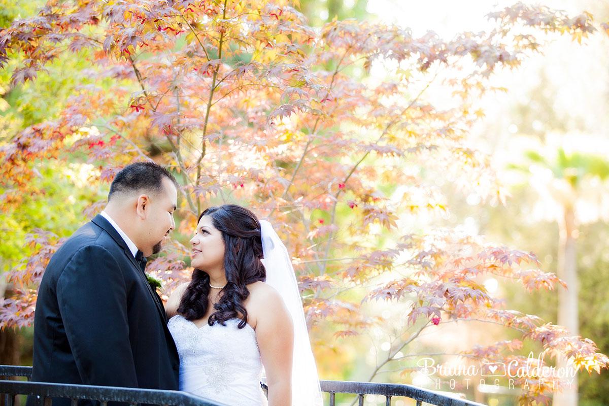 nn-wedding-3777.jpg