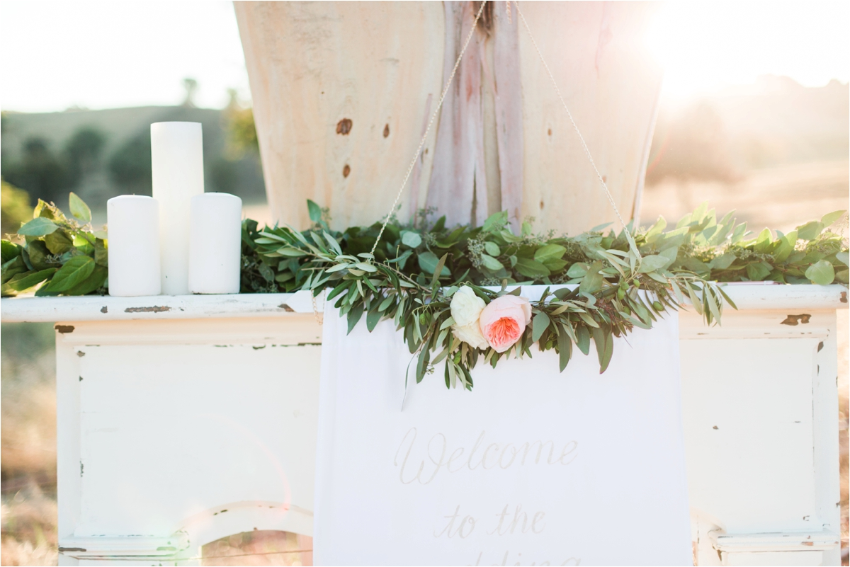 Wedding pictures by Briana Calderon Photography_0380.jpg