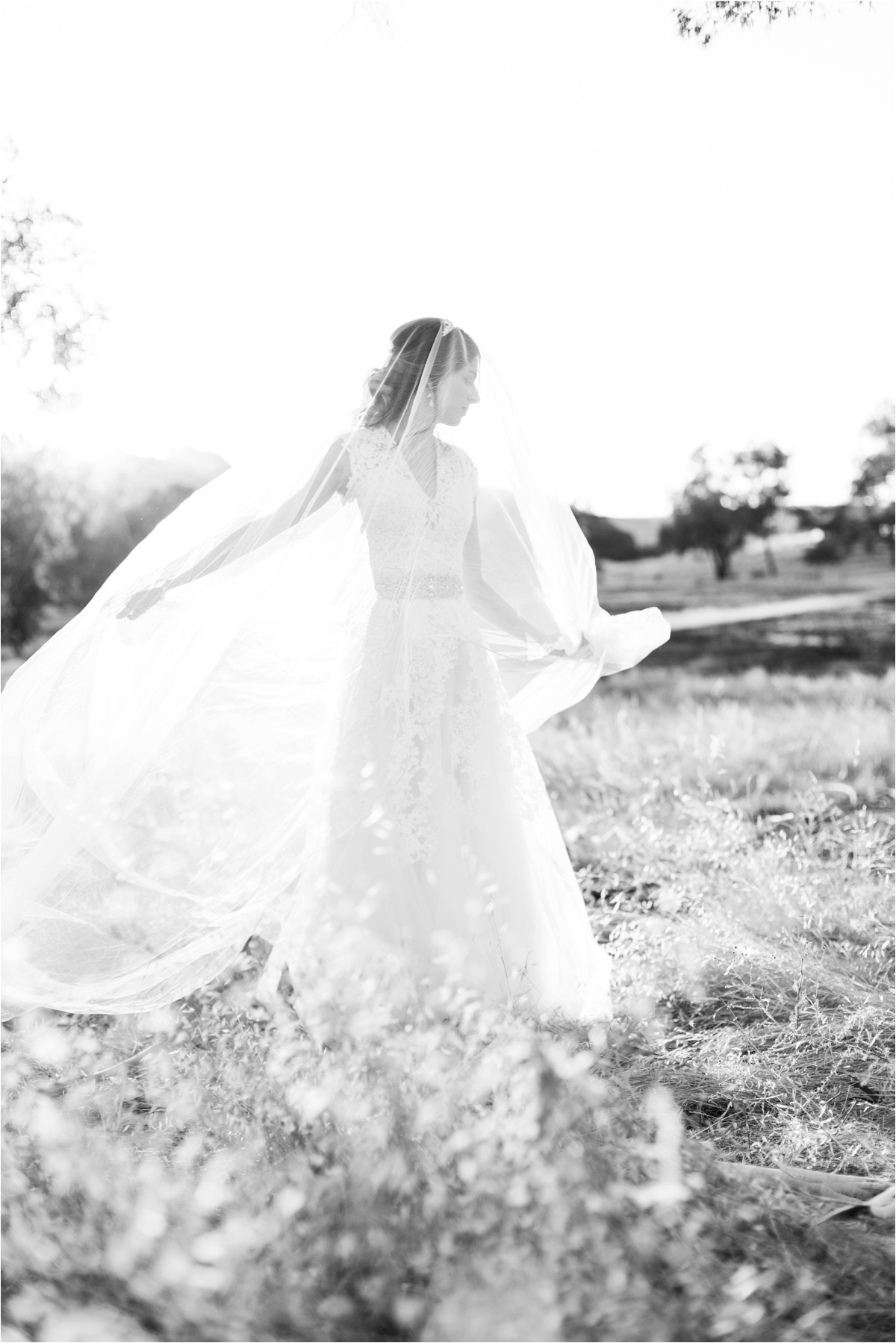 Wedding pictures by Briana Calderon Photography_0385.jpg