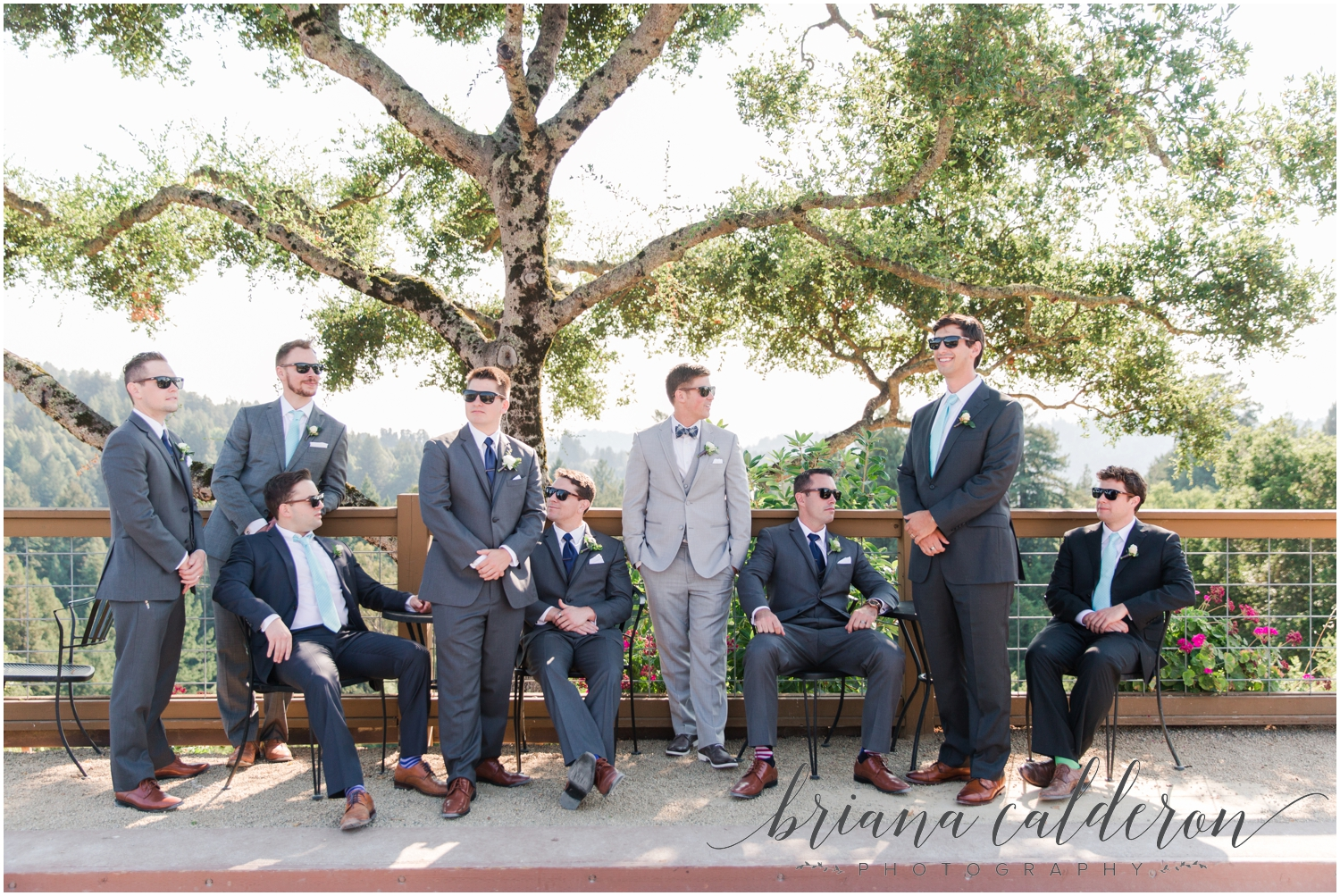 Regale Winery Wedding photos by Briana Calderon Photography_0663.jpg
