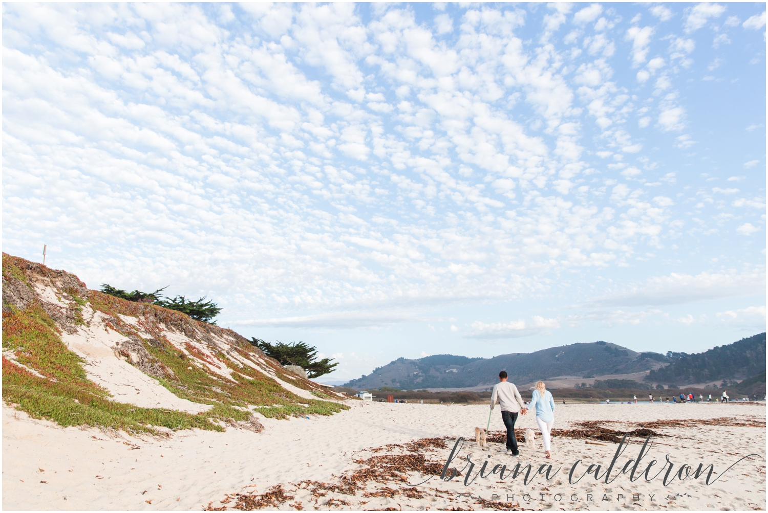 Carmel beach engagement pictures by Briana Calderon Photography_1159.jpg