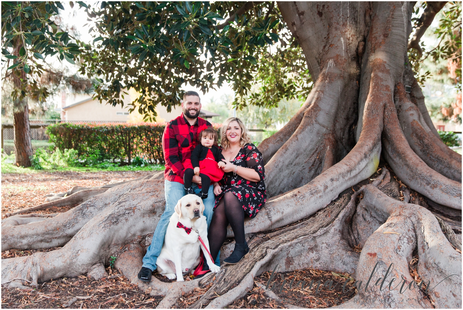 Family pictures at Shinn Historical Park in Fremont by Briana Calderon Photography_1202.jpg