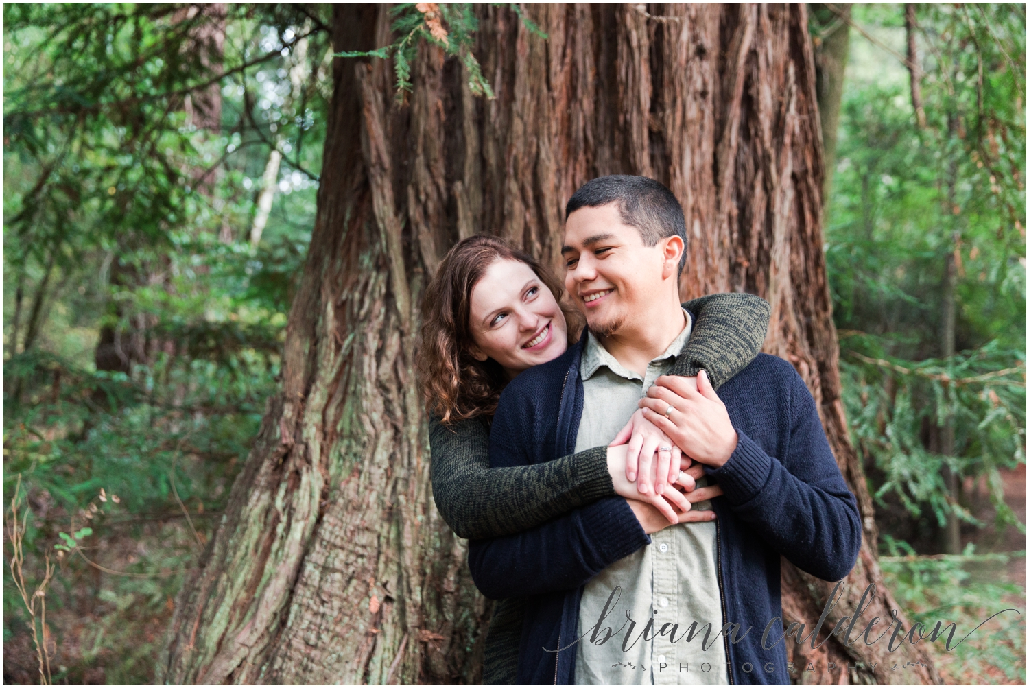 Engagement pictures at Henry Cowell Redwoods in Felton, CA by Briana Calderon Photography_1345.jpg