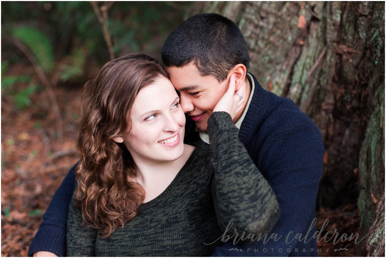 Engagement pictures at Henry Cowell Redwoods in Felton, CA by Briana Calderon Photography_1344.jpg