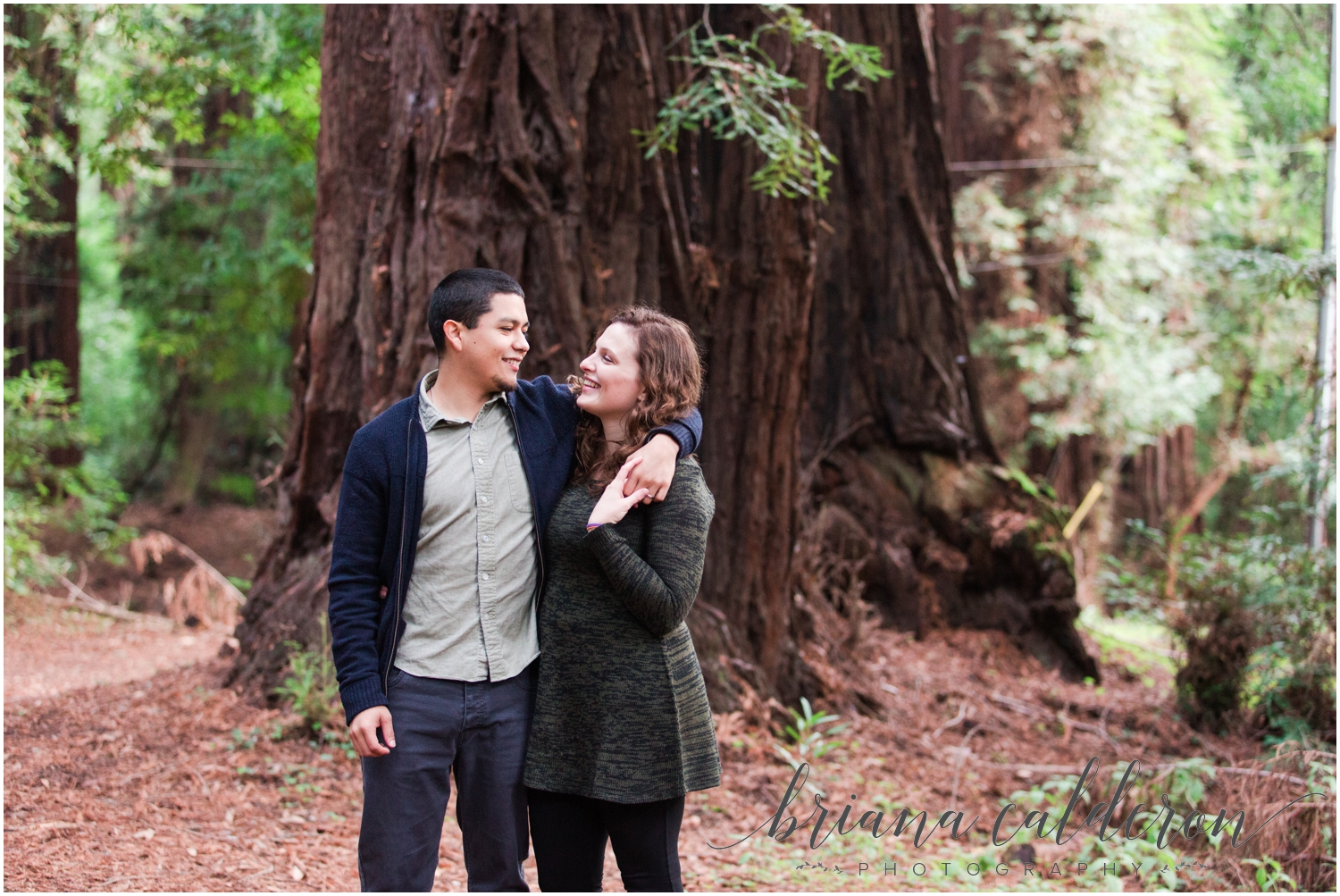 Engagement pictures at Henry Cowell Redwoods in Felton, CA by Briana Calderon Photography_1326.jpg