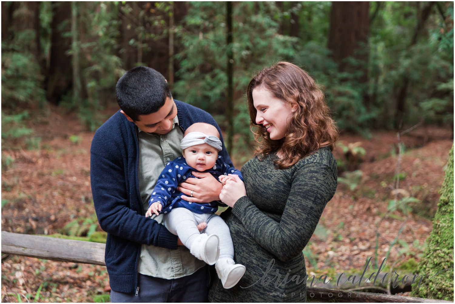 Engagement pictures at Henry Cowell Redwoods in Felton, CA by Briana Calderon Photography_1320.jpg