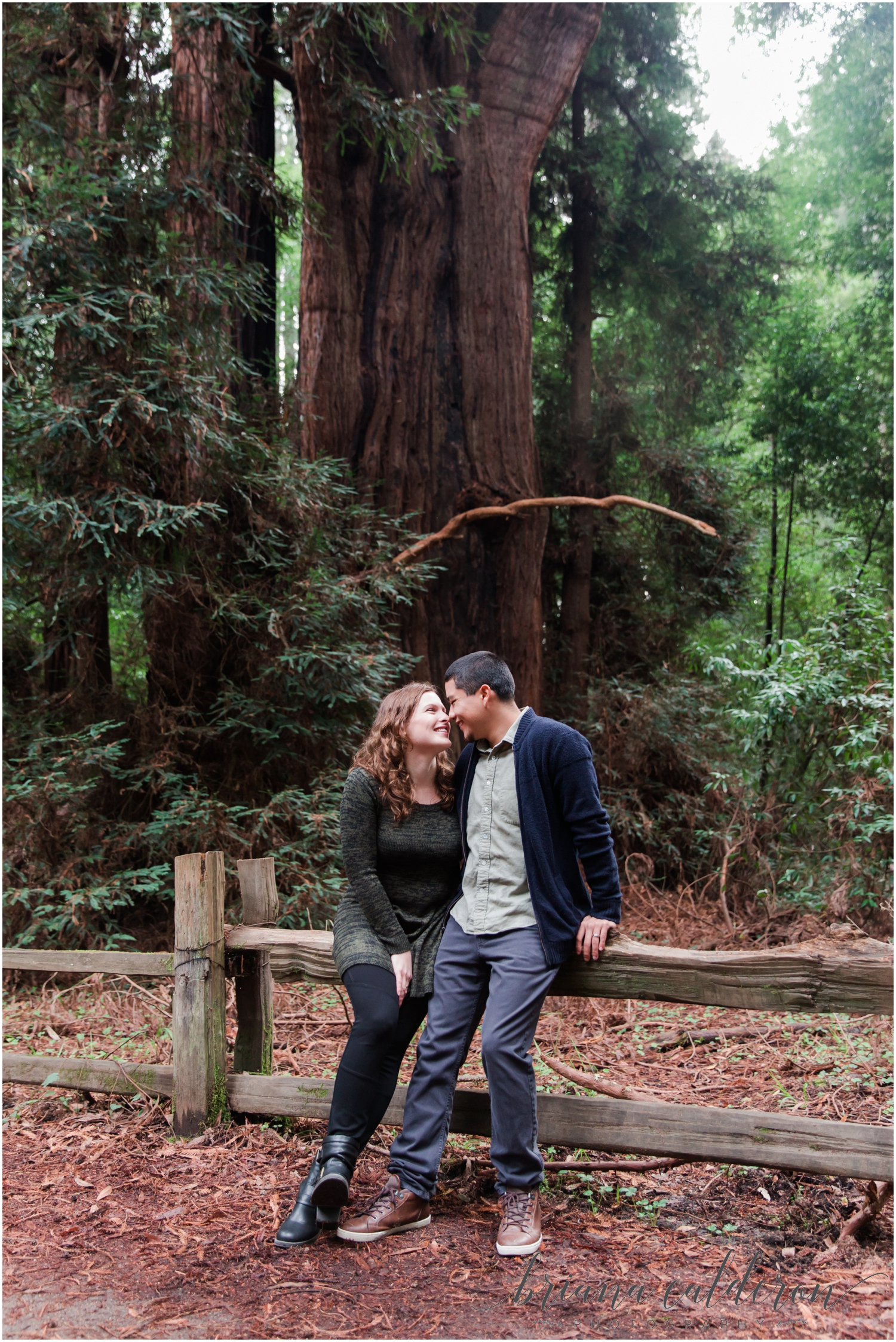 Engagement pictures at Henry Cowell Redwoods in Felton, CA by Briana Calderon Photography_1317.jpg