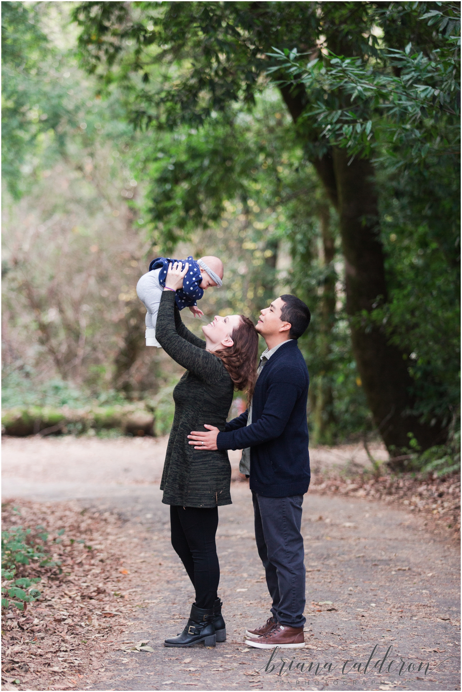 Engagement pictures at Henry Cowell Redwoods in Felton, CA by Briana Calderon Photography_1348.jpg
