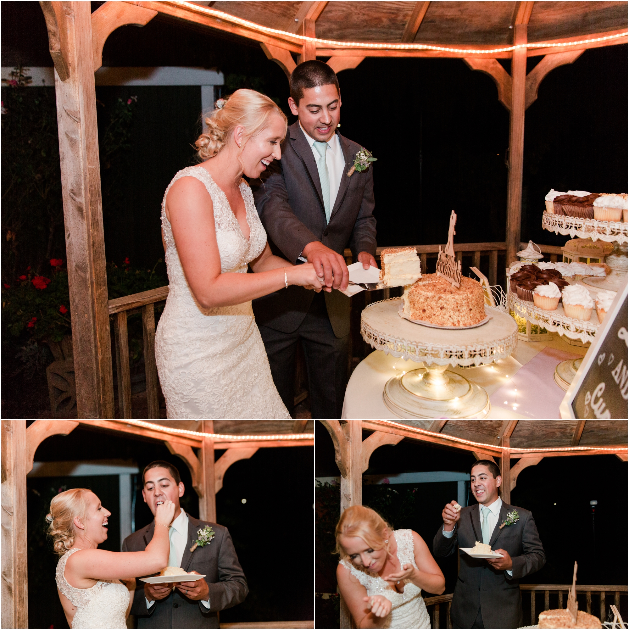 Retzlaff Winery wedding pictures by Briana Calderon Photography_2283.jpg