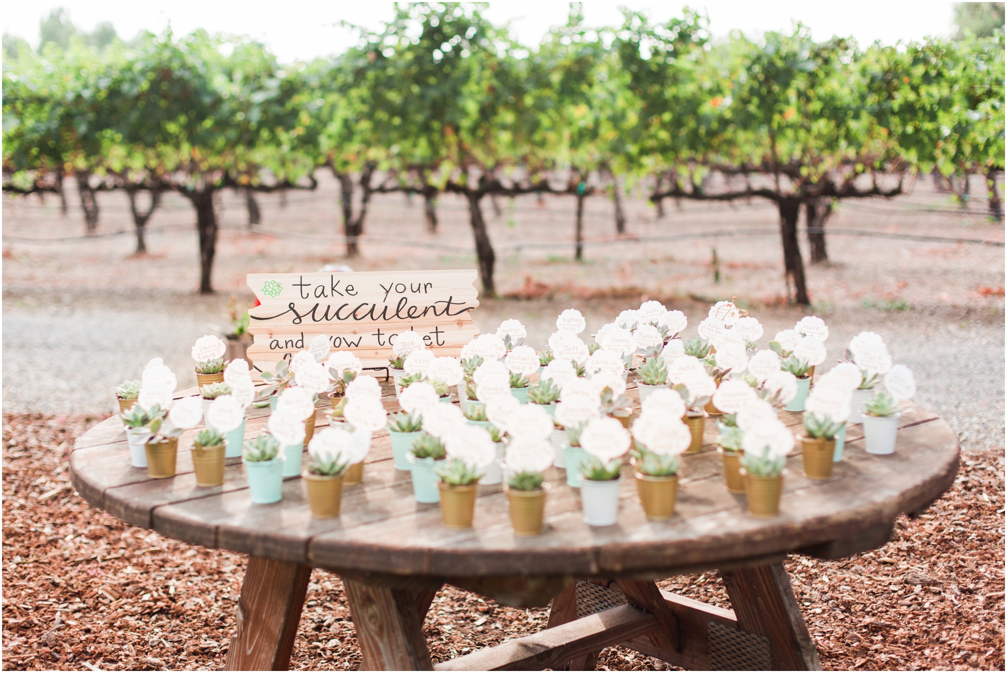 Retzlaff Winery wedding pictures by Briana Calderon Photography_2299.jpg