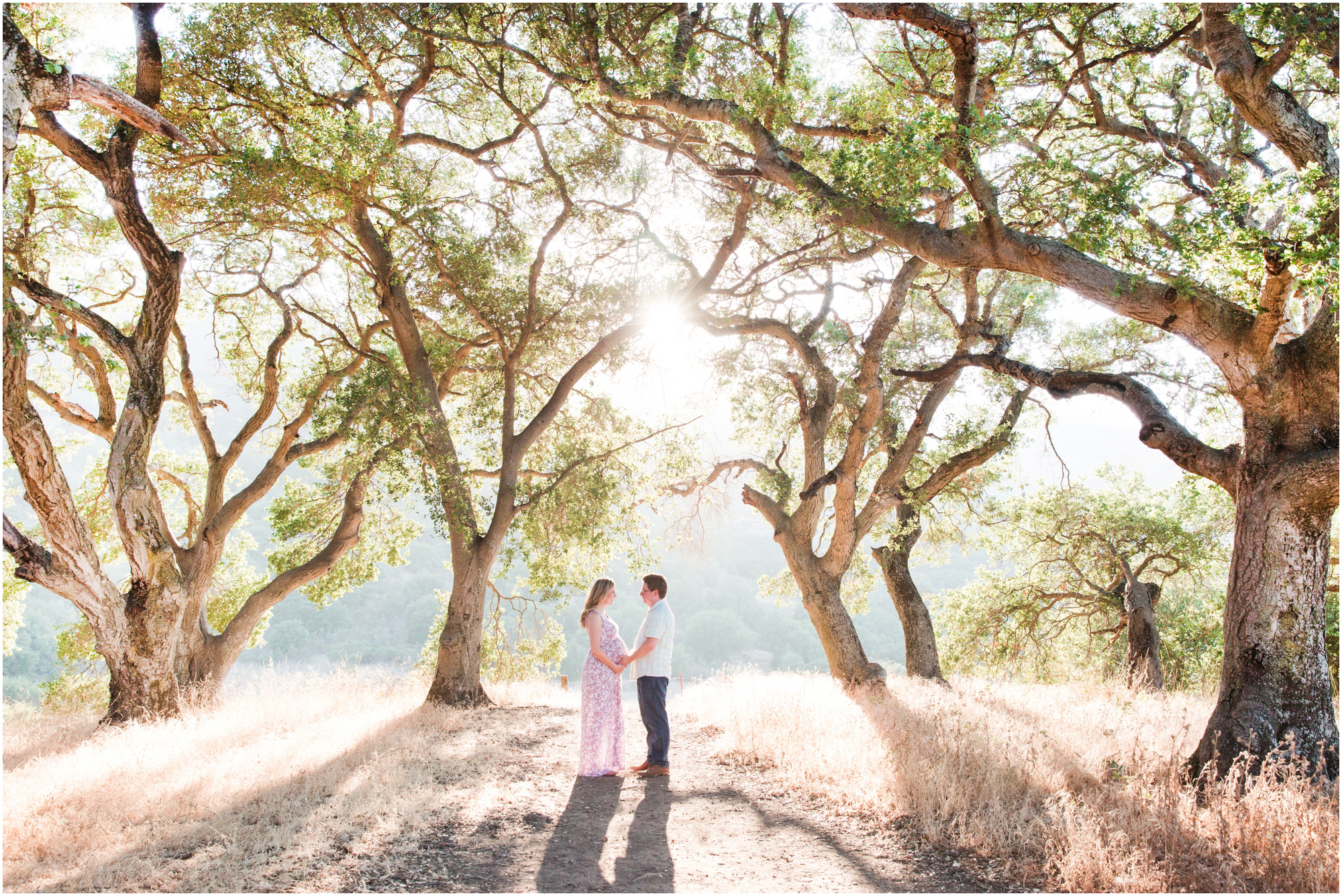 Picchetti Winery maternity pictures by Briana Calderon Photography_2352.jpg