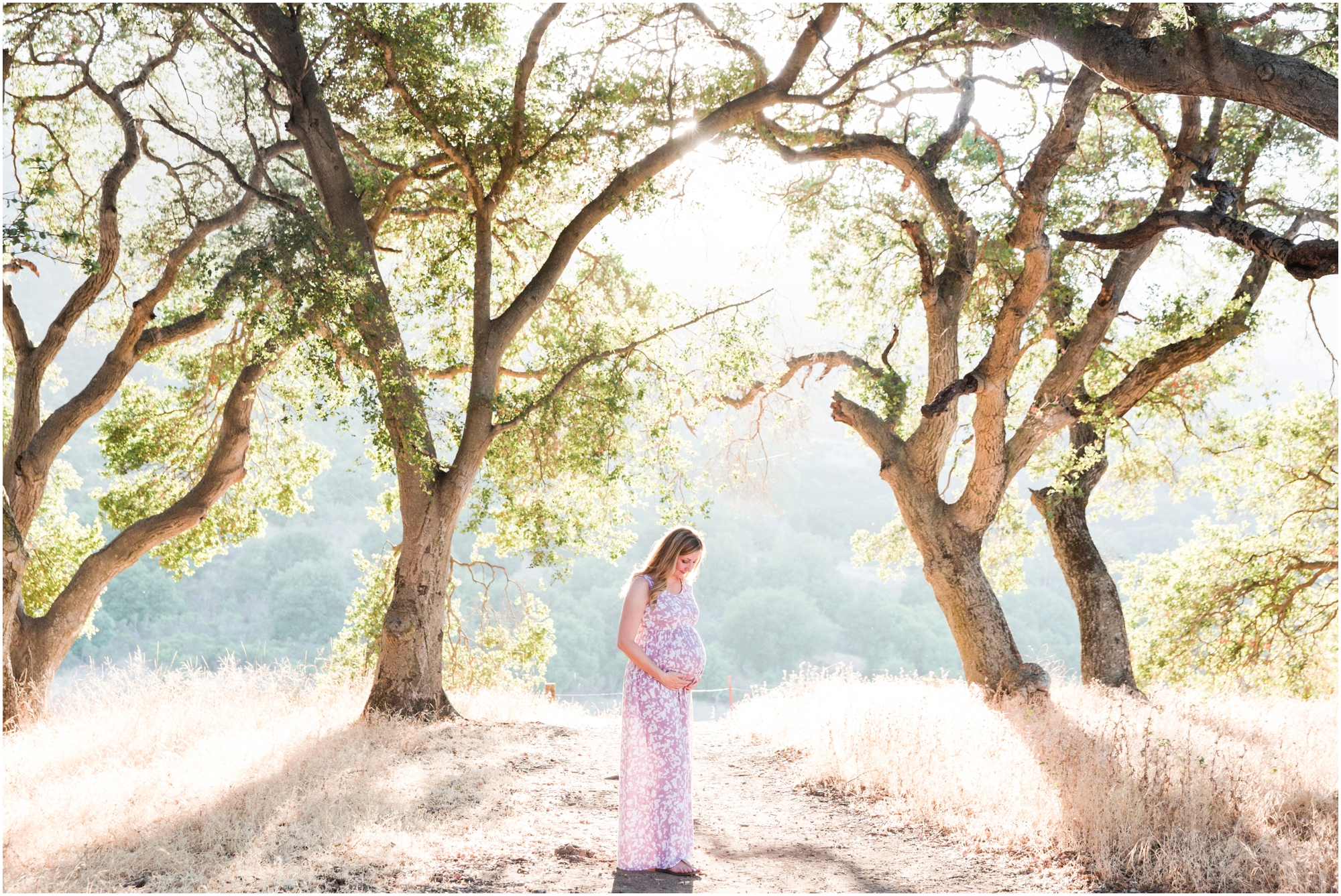 Picchetti Winery maternity pictures by Briana Calderon Photography_2356.jpg