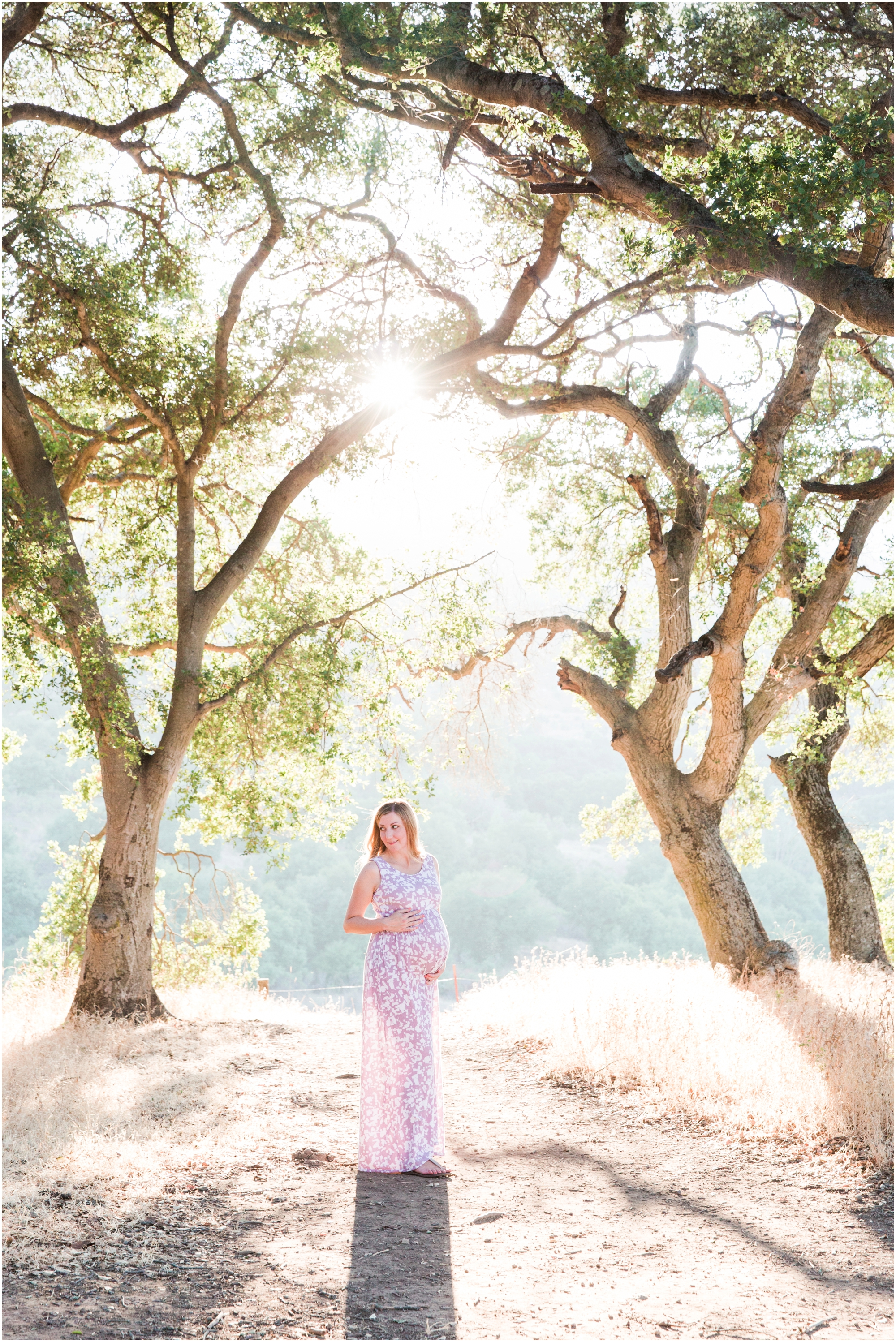 Picchetti Winery maternity pictures by Briana Calderon Photography_2355.jpg