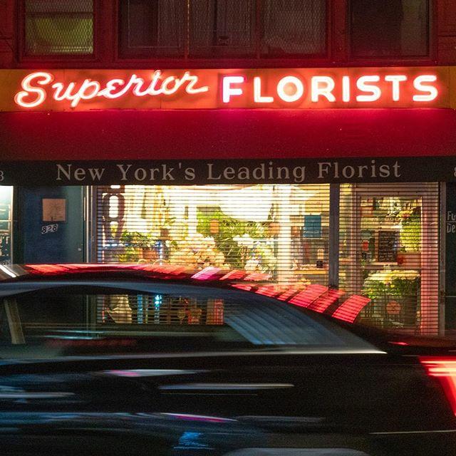 #superiorflorests