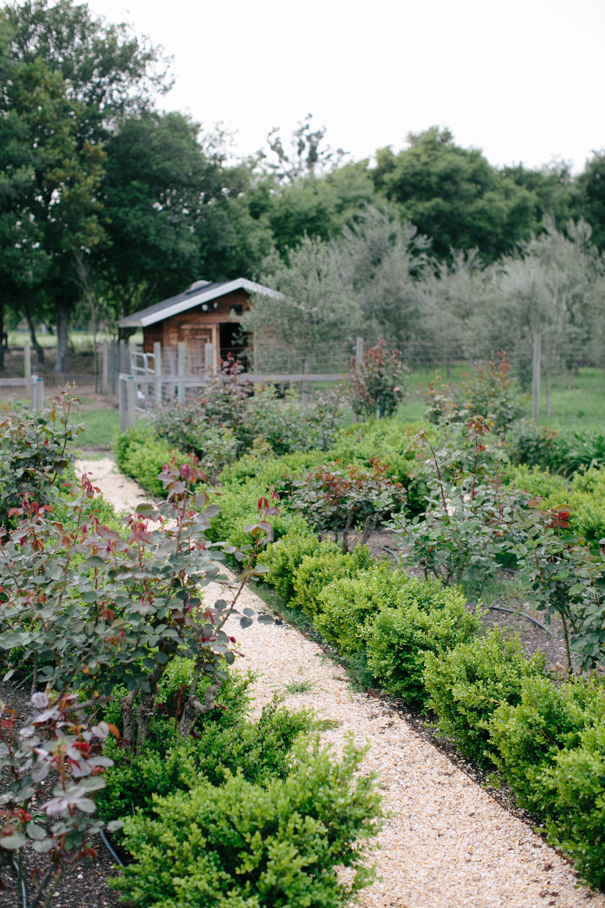 The Rose Gardens of Gore Farms