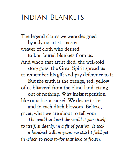 OTOOTLOCM_IndianBlankets.png