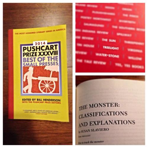 Pushcart Poem.jpg