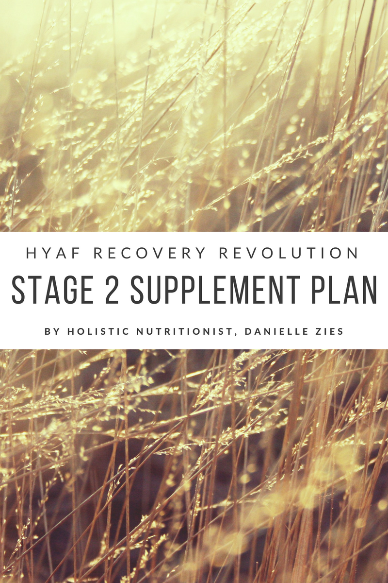 Stage 3 Plan